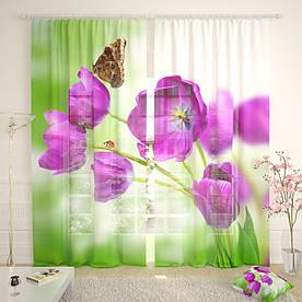 Фототюль букет тюльпанов