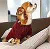 Платье для собак. Одежда для собак мелких пород.
