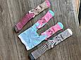 Дитячі демісезонні колготки BROSS асорті кольорів з зайчиками бавовна розмір 0-6 місяців, фото 7