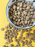 Сухий корм для котів ТМ Дружок зі смаком курки (10 кг), фото 3