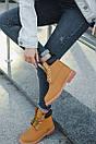 Женские ботинки Timberland (Термо), фото 2