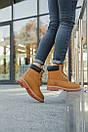 Женские ботинки Timberland (Термо), фото 3