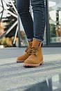 Женские ботинки Timberland (Термо), фото 5