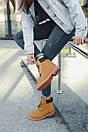 Женские ботинки Timberland (Термо), фото 6