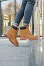 Женские ботинки Timberland (Термо), фото 10
