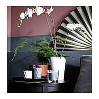 """IKEA """"ПАПАЙА"""" Кашпо, белый, для орхидей, 12x19 см"""