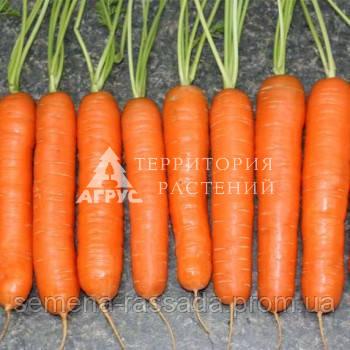 Морковь Натофи, 2 г
