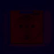 Розетка с заземлением и крышкой Luxel JAZZ (9011) белая