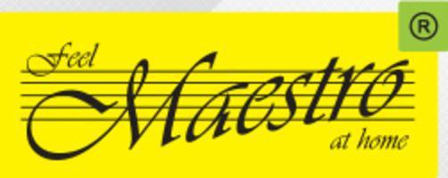 "Фен для волос ТМ ""Maestro"""