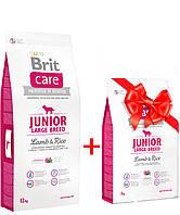 Сухой корм для щенков и молодых собак крупных пород Brit Care Junior Large Breed Lamb & Rice 12кг
