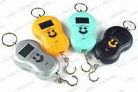Весы кантер электронный до 40кг с термометром (GIPS), Весы кантеры