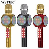 Беспроводной караоке микрофон WS-1816 (GIPS), Микрофоны
