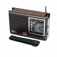 Радиоприемник Golon RX-9933 UAR (GIPS), Колонки портативные