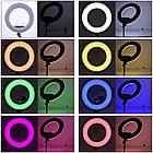 Кольцевая LED лампа 33 см RGBW 8 цветов кольцевой свет подсветка для фотографов блогеров тиктокеров визажистов, фото 2