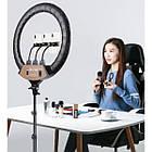 Кольцевой свет Ring Light лампа светодиодная с тремя гибкими держателями для телефона пультом ДУ и сумкой от, фото 3