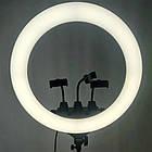Кольцевая лампа Ring Light светодиодная с тремя съёмными держателями для телефонов пультом ДУ и сумкой 55см, фото 3
