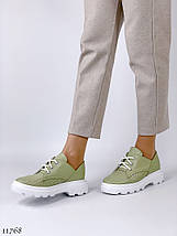 Туфлі жіночі зелені 11768 (ЯМ), фото 2