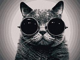 "Картина по номерах ""Кіт Морфеус"" (AC11607)"
