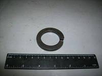 Шайба пружинная 33,5 (гровер) пальца реактивной штанги (пр-во АвтоКрАЗ) (Арт. 345302-П29)