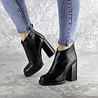 Ботильоны женские Fashion Tito 2458 40 размер 25,5 см Черный, фото 2