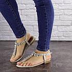 Жіночі босоніжки, в'єтнамки Fashion Amber 1595 37 розмір 24 см Сірий, фото 6