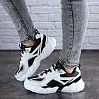 Женские кроссовки Fashion Bruno 1995 37 размер 24 см Белый, фото 2