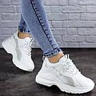 Жіночі кросівки Fashion Tomas 2075 36 розмір 23 см Білий, фото 4