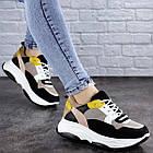 Жіночі різнокольорові кросівки Fashion Pepita 2043 36 розмір 23 см Чорний, фото 3