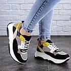 Жіночі різнокольорові кросівки Fashion Pepita 2043 36 розмір 23 см Чорний, фото 4