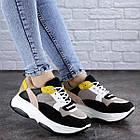 Жіночі різнокольорові кросівки Fashion Pepita 2043 36 розмір 23 см Чорний, фото 5