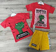 Детский летний костюм 3-6 лет для мальчиков Турция оптом