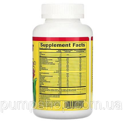 Вітамін для дітей Natural Factors Big Friends Chewable Multivitamin 60 таб., фото 2
