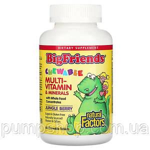 Вітамін для дітей Natural Factors Big Friends Chewable Multivitamin 60 таб.