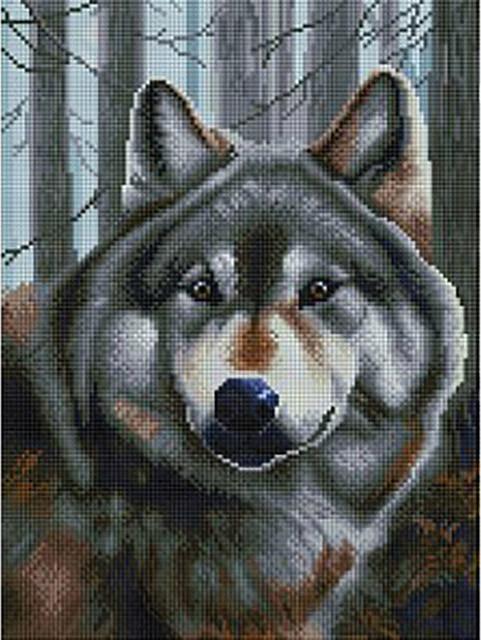 """Алмазная вышивка """"Волк"""" Белоснежка 30х40 см"""
