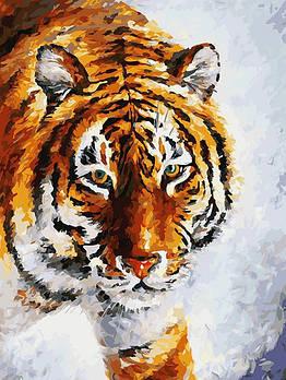 """Картина за номерами """"Тигр на снігу"""" Білосніжка 30х40 см"""