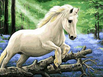 """Картина за номерами """"В лісі диких гіацинтів"""" Білосніжка 40х30 см"""