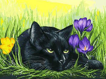 "Картина по номерам ""Кот и крокусы"" Белоснежка 30х40 см"