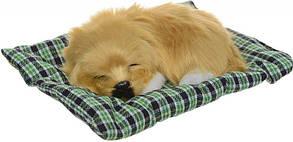 Собачка на подушці G1 (велика) (80)