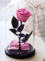 Декоративна троянда в колбі в подарунок Raspberry №A78 з LED подсведкой, рожева, від батарейок