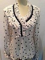 Блуза шелковая женская белая в горохи