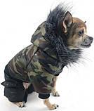 Зимний комбинезон для собак  Dog Вomba камуфляж №3 (26см/40см/32см), фото 3
