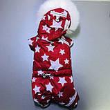 Комбінезон зимовий FiFa (Фіфа) на хутрі для собак Галактика XXS (А22/В25-31см), фото 2