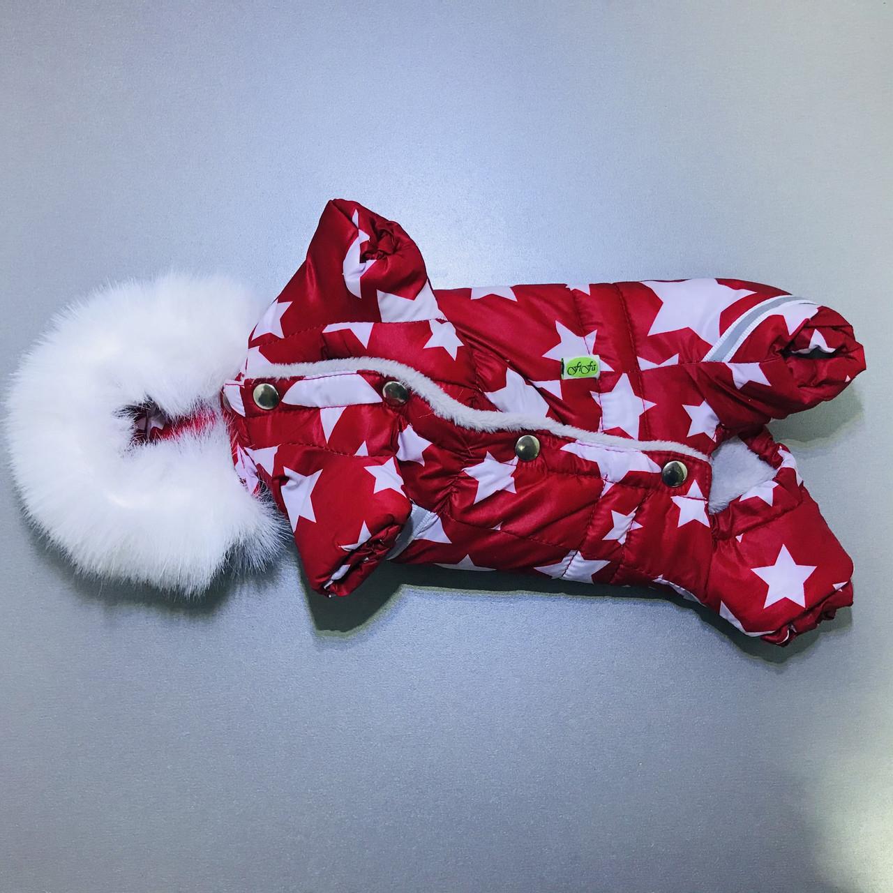 Комбінезон зимовий FiFa (Фіфа) на хутрі для собак Галактика XXS (А22/В25-31см)