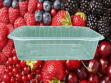 Ємність поліпропіленова (контейнер) для ягід на 0.5 кг.( 50 шт.)