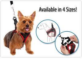Поводок  для  собак Comfy Control Harness Новинка