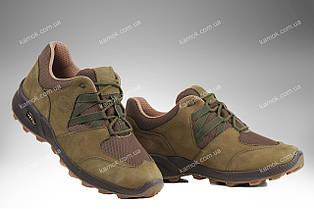 Военная обувь демисезонная / трекинговые тактические кроссовки PEGASUS (olive)