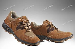 Военная обувь демисезонная / трекинговые тактические кроссовки PEGASUS (coyote)