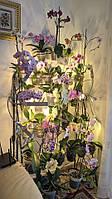 Арка наклонная-2, подставка для цветов на 33 кольца
