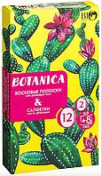 Набір для депіляції тіла Bio World Botanica (смужки/12шт+8шт + саше)