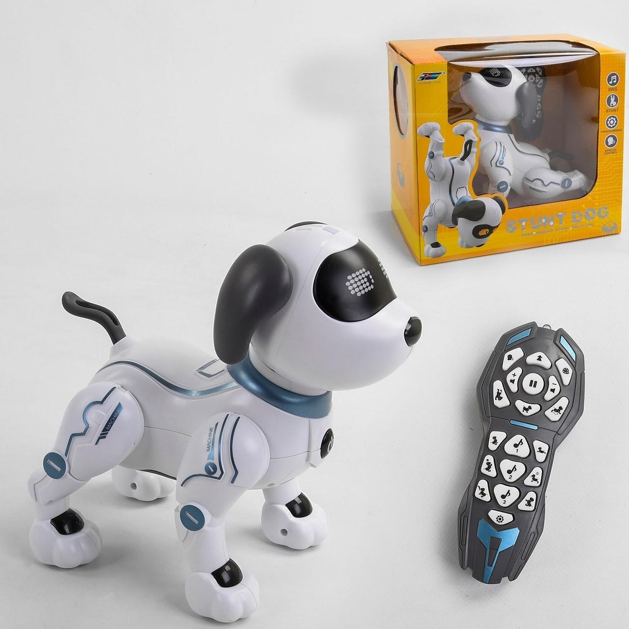 Собачка на радіокеруванні До 16
